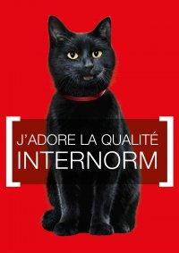 Changement de fenêtres INTERNORM (2013), MORBIER Les Marais (39)